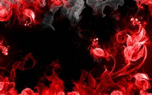 Red fire rose flower black abstract