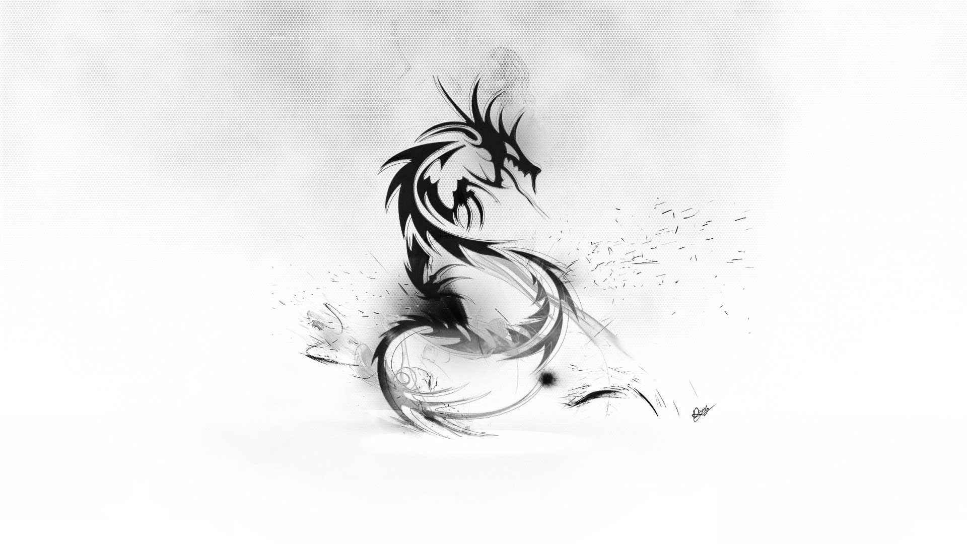 Dragon white abstract wallpapers