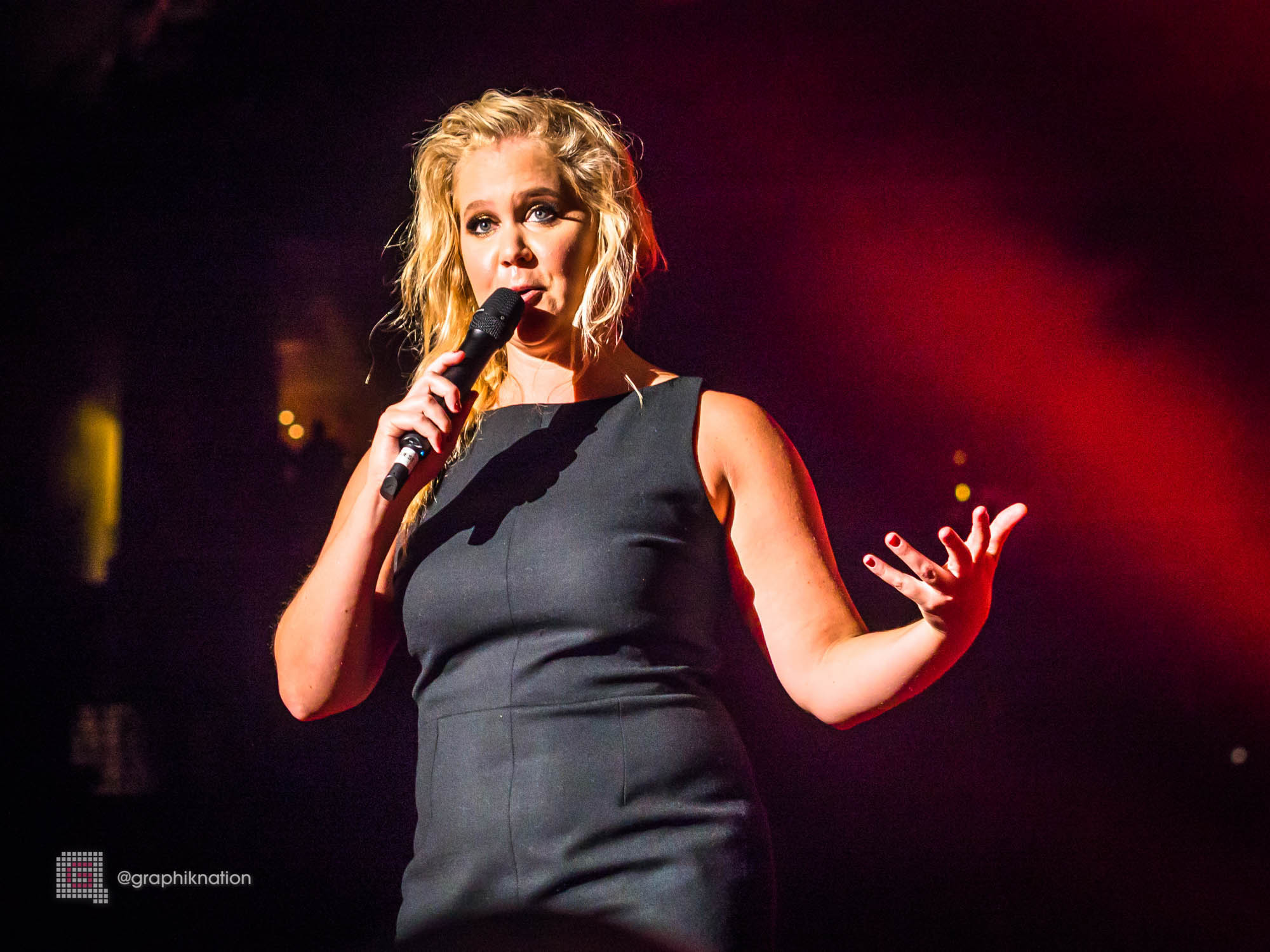 16 amy schumer wallpapers hd download