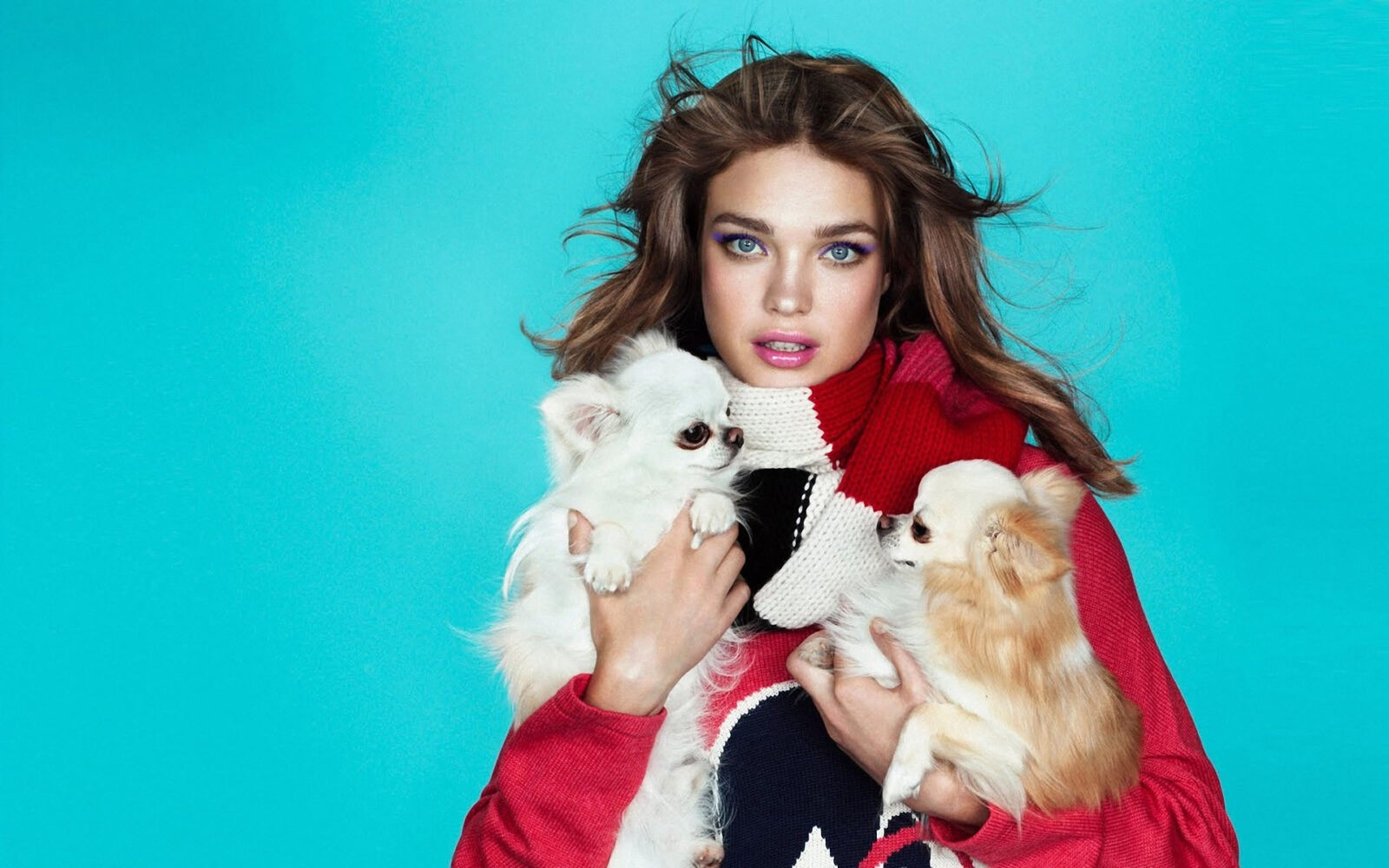 Picture young Natalia Vodianova with dogs chihuahua