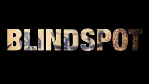 Blindspot logotype picture