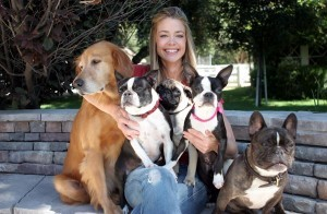 Images Denise Richards and dogs
