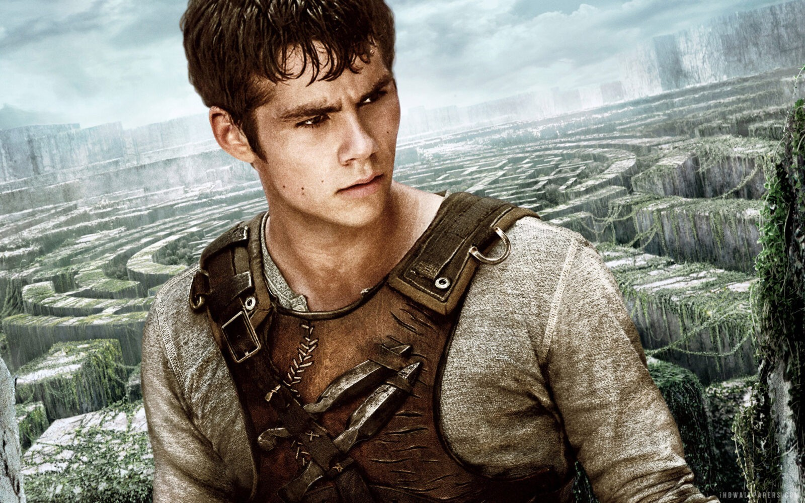 Dylan O'brien The Maze Runner wallpaper