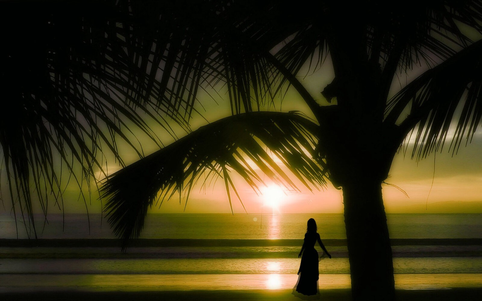 Palm trees sunset girl on a beach wallpaper