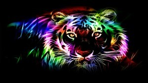 Tiger abstract picture