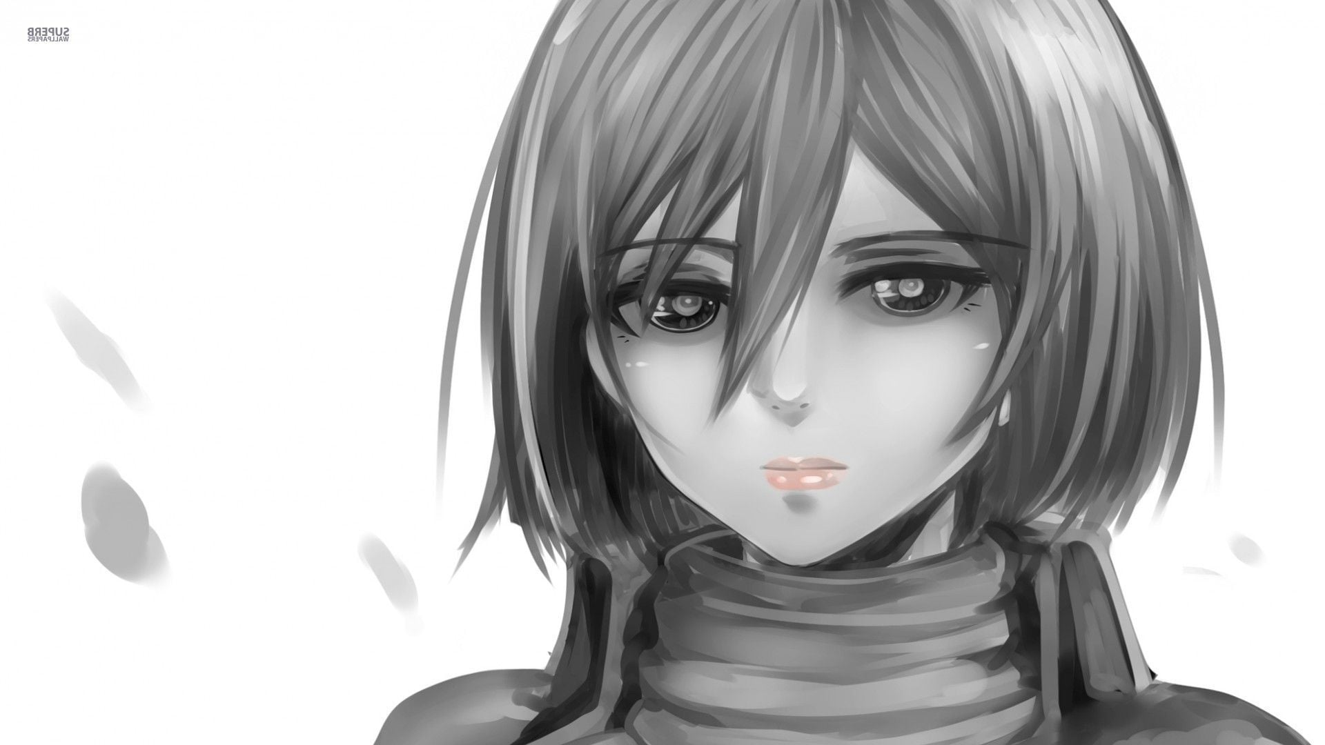 Awesome Mikasa Ackerman Attack On Titan draw picture