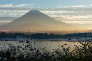 Morning of Lake Syoji mount Fuji High Resolution wallpaper