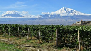 Wine field mount Ararat themes for PC
