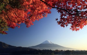 Autumn mount Fuji wallpaper