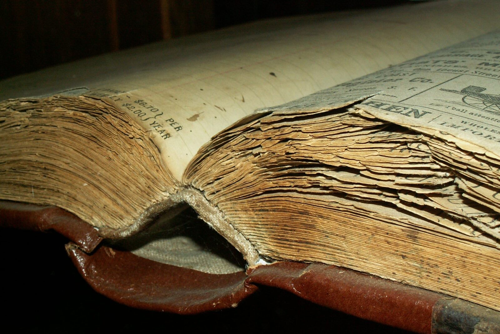 Antique book free download
