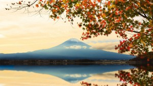 autumn mount Fuji pictures