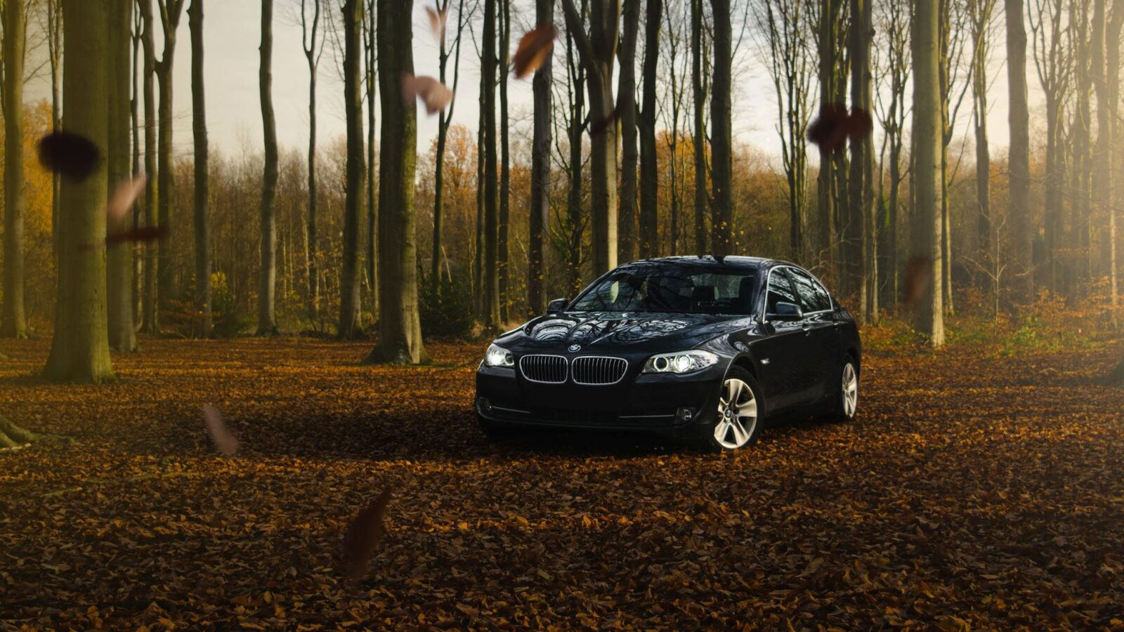 black BMW M5 F10 pictures