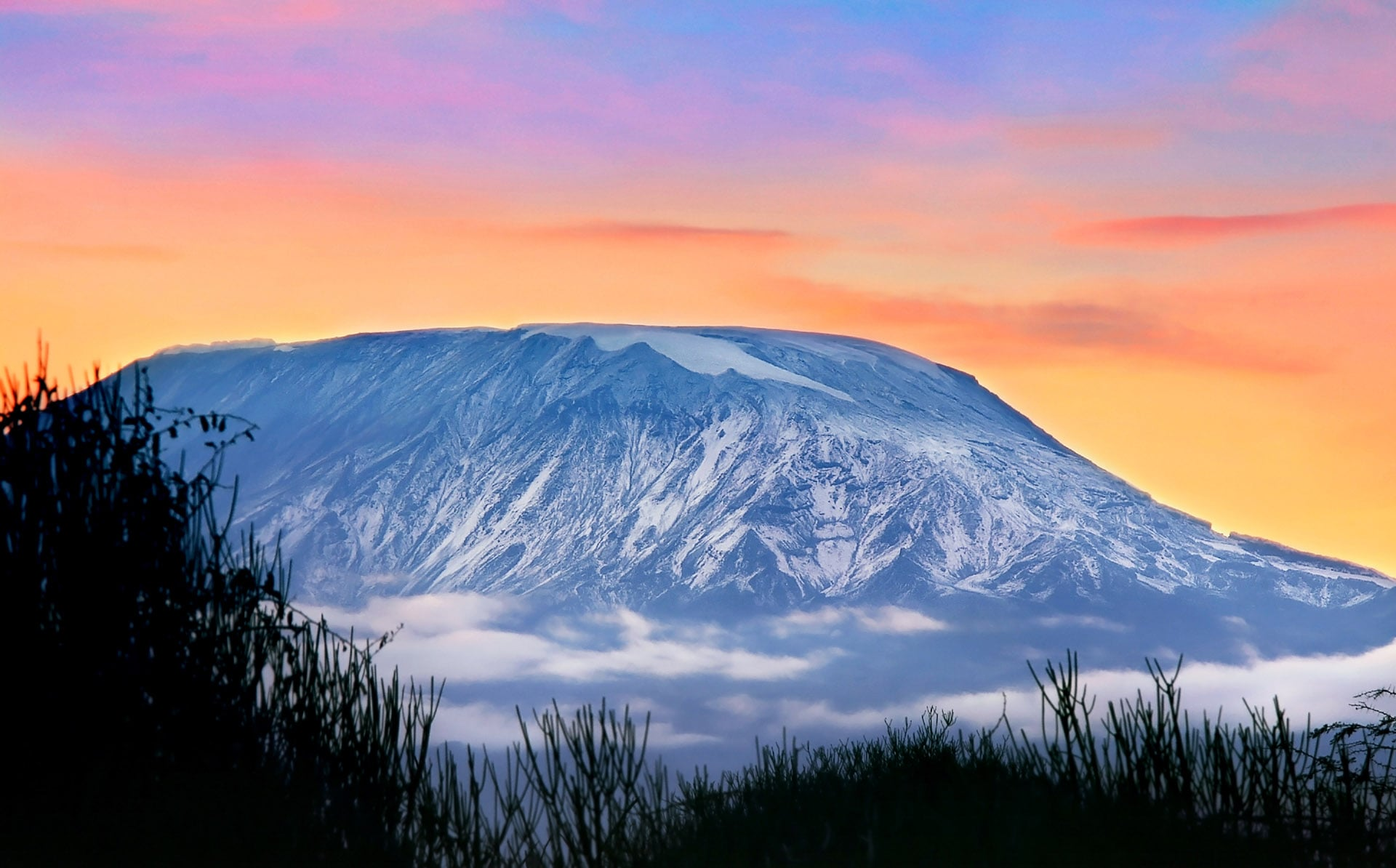 evening mount Kilimanjaro High Quality wallpapers