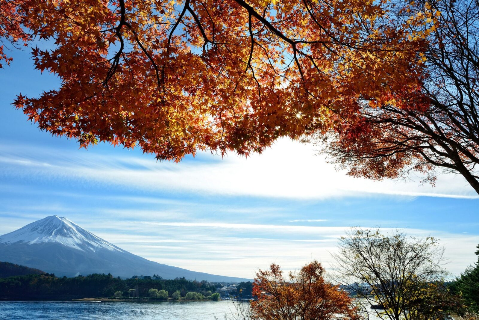 spring mount Fuji wallpapers