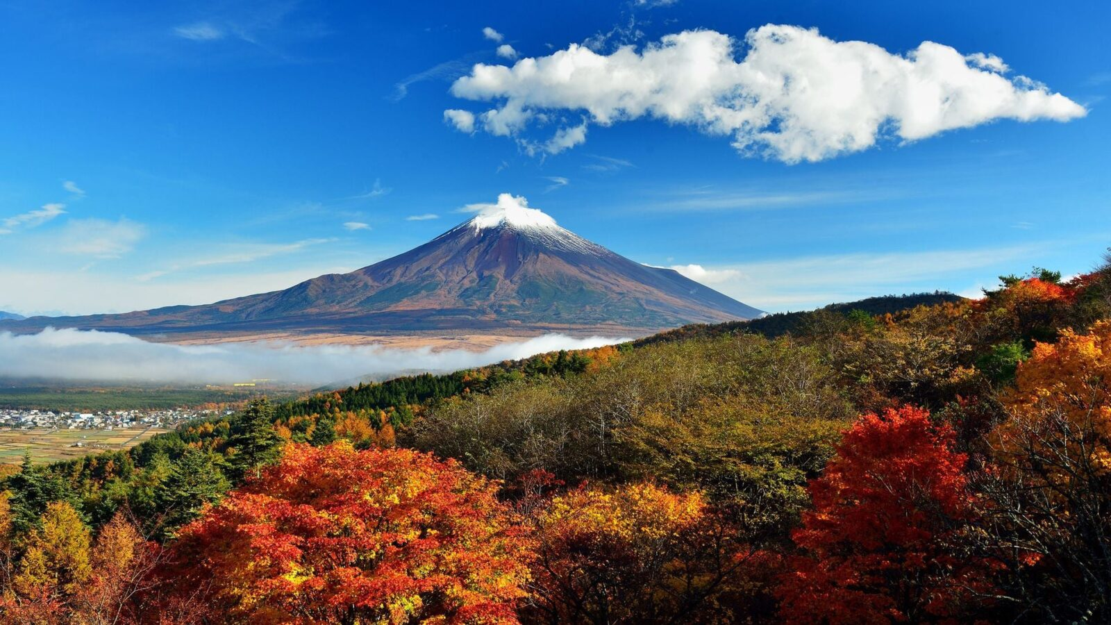 summer mount Fuji HD photo