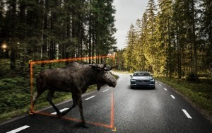 2016 Volvo S90 Animal Detection photo