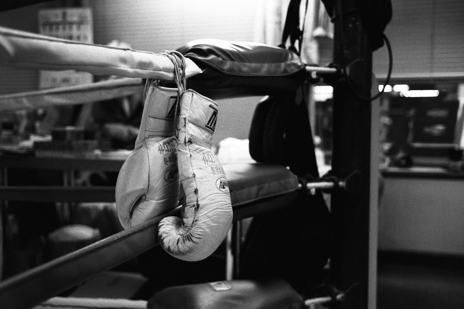 boxing gloves bw wallpaper download
