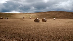 field farm rural landscape wallpaper download