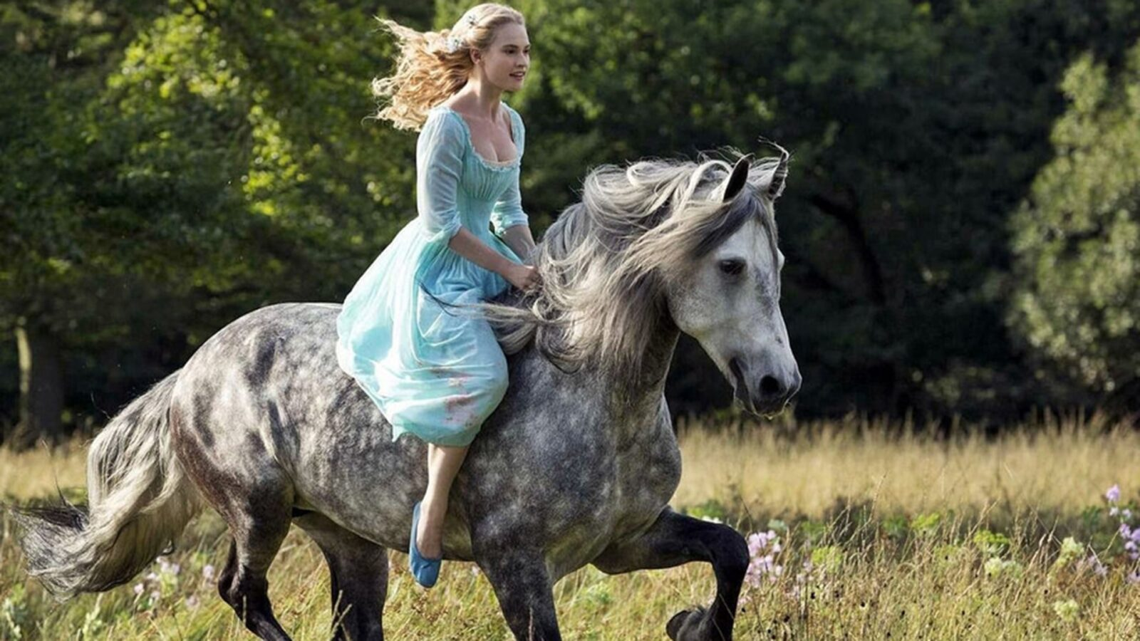 Lily James on horse walpapers for windows