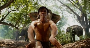 Tony Jaa picture