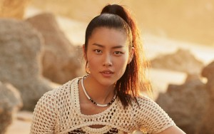 amazing Liu Wen Desktop Wallpaper Widescreen sunset