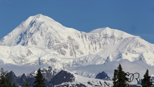Mount McKinley Denali photo