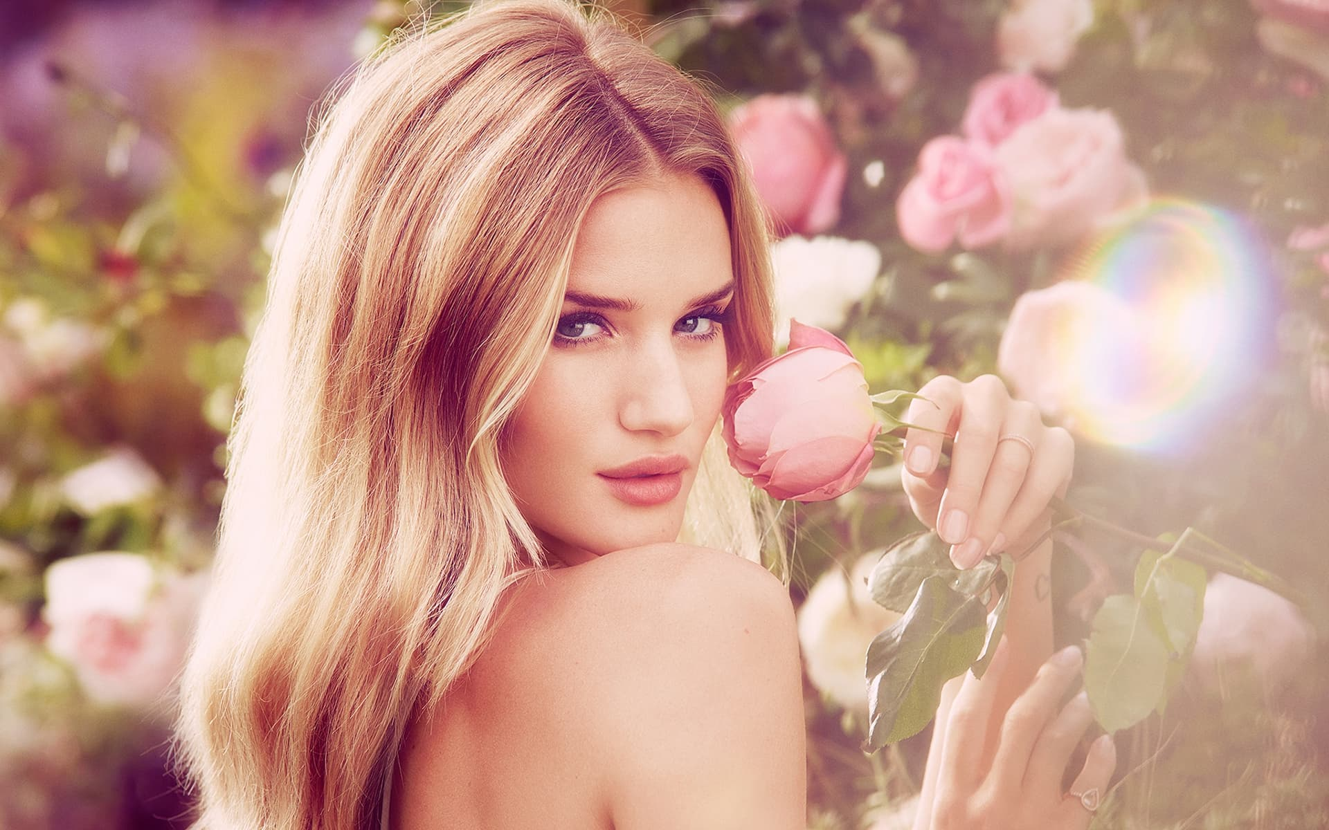 Rosie Huntington-Whiteley free wallpaper