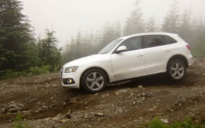 white Audi Q5 High Definition wallpaper