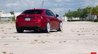 Lexus IS 350 rear bumper Picture