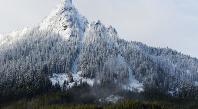 Beautiful snowy mountain peak with trees