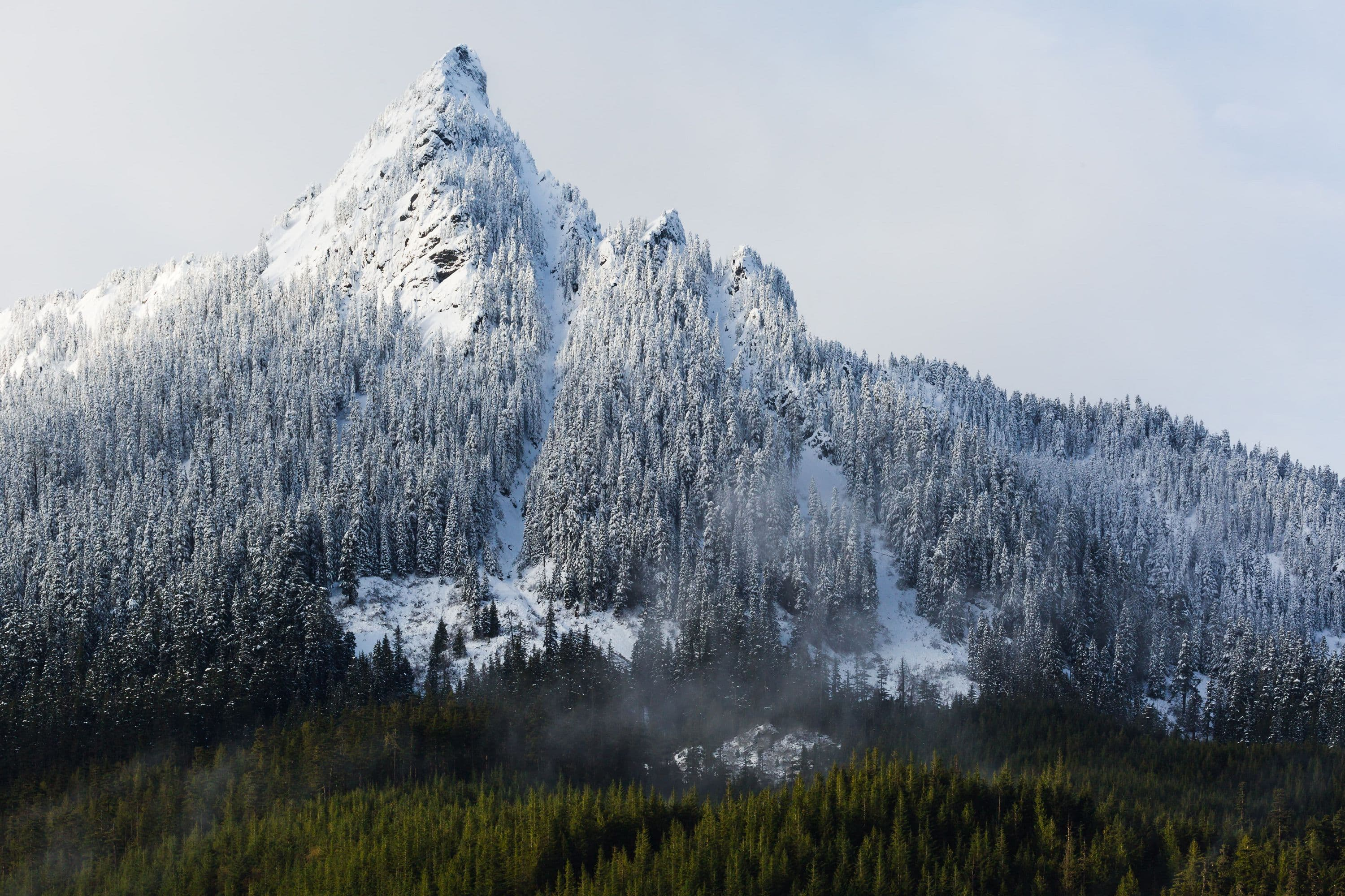Snow peak and trees