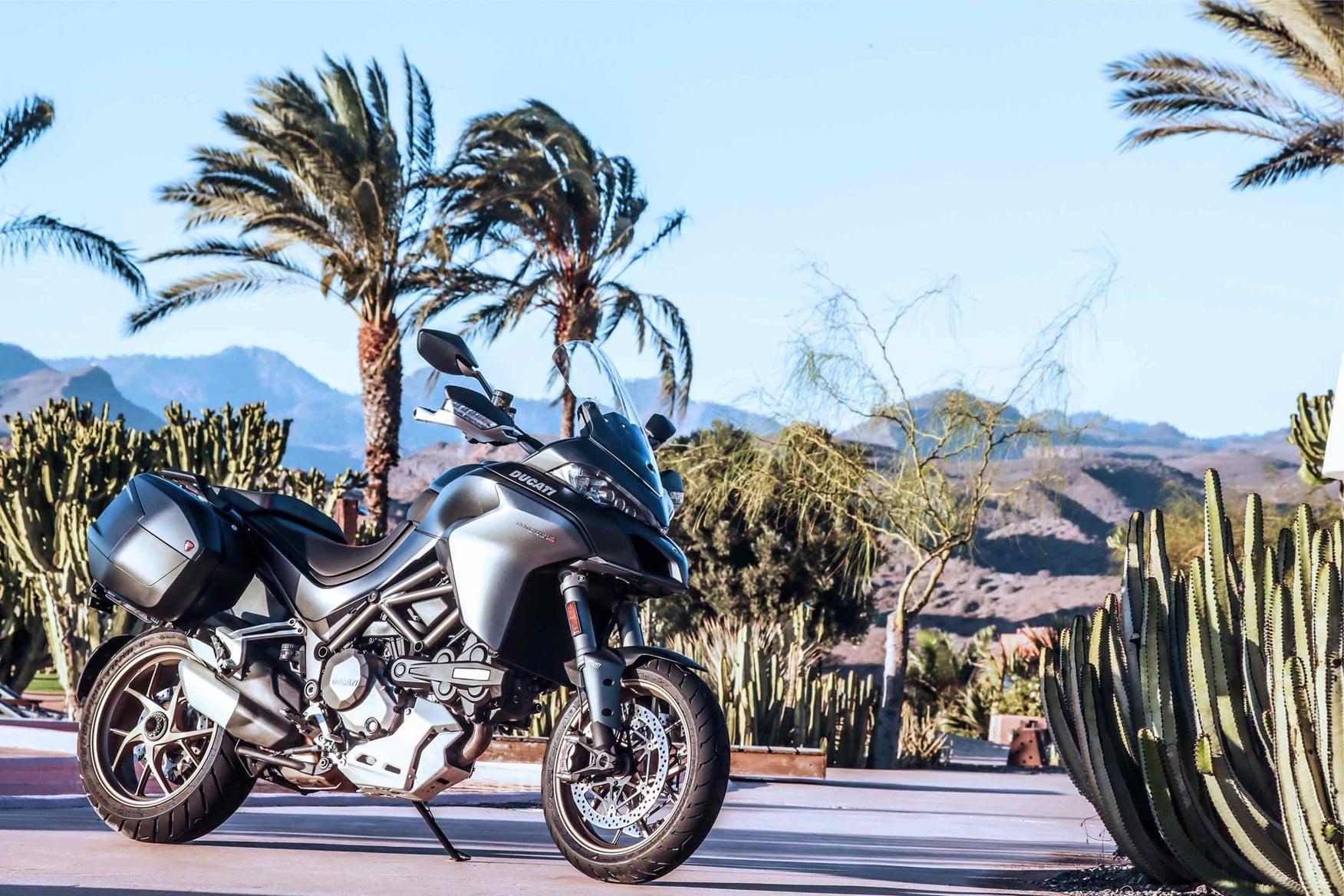 2018 Ducati Multistrada 1260 S and palms