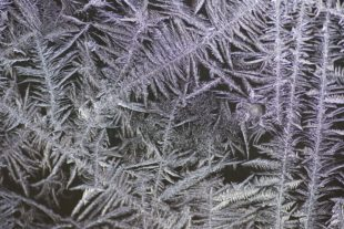 Beautiful frost on a glass