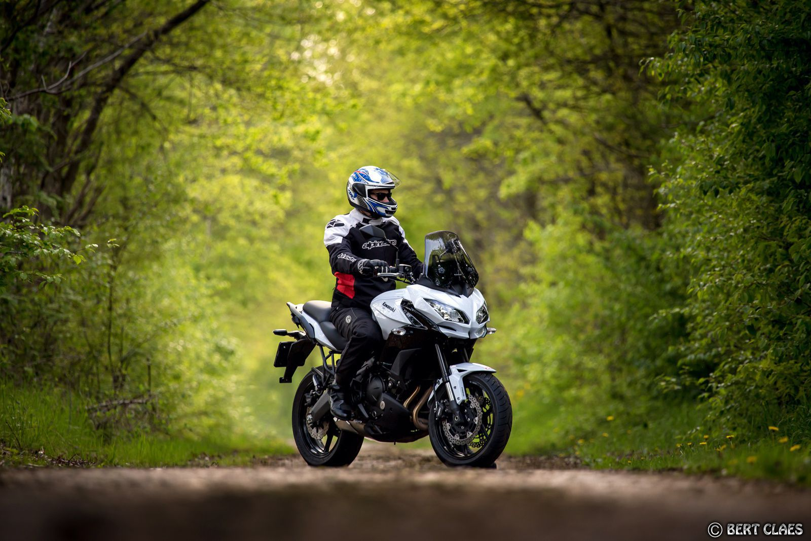 white Kawasaki Versys 650 in a forest