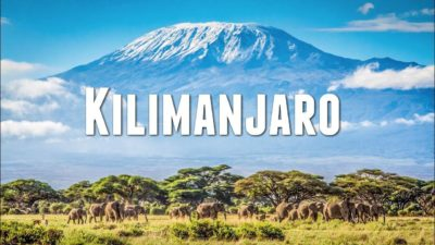 animals and Kilimanjaro logotype at mountain background