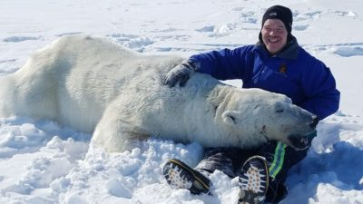 sleeping polar bear with a man