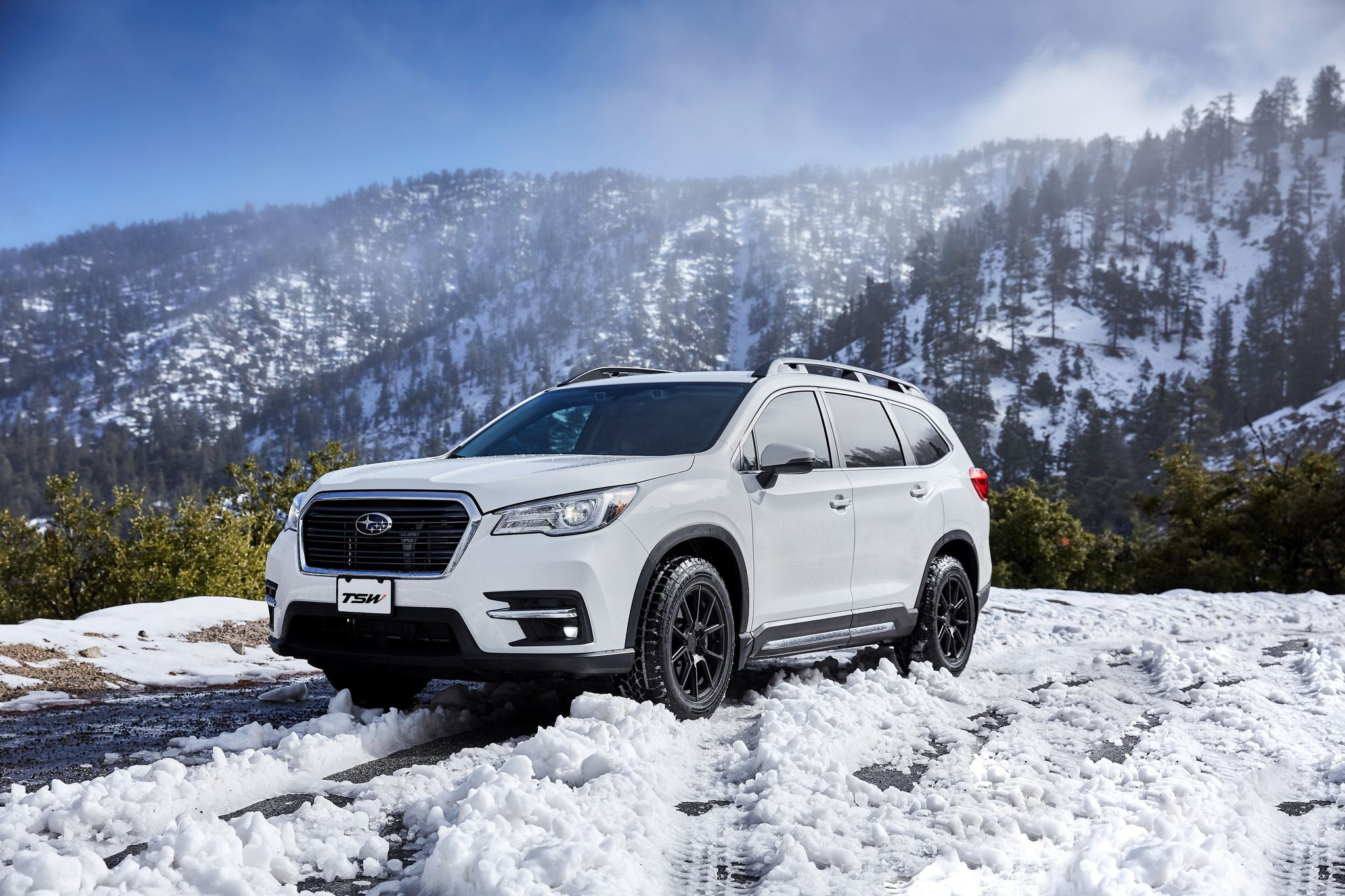 white Subaru Ascent 2019