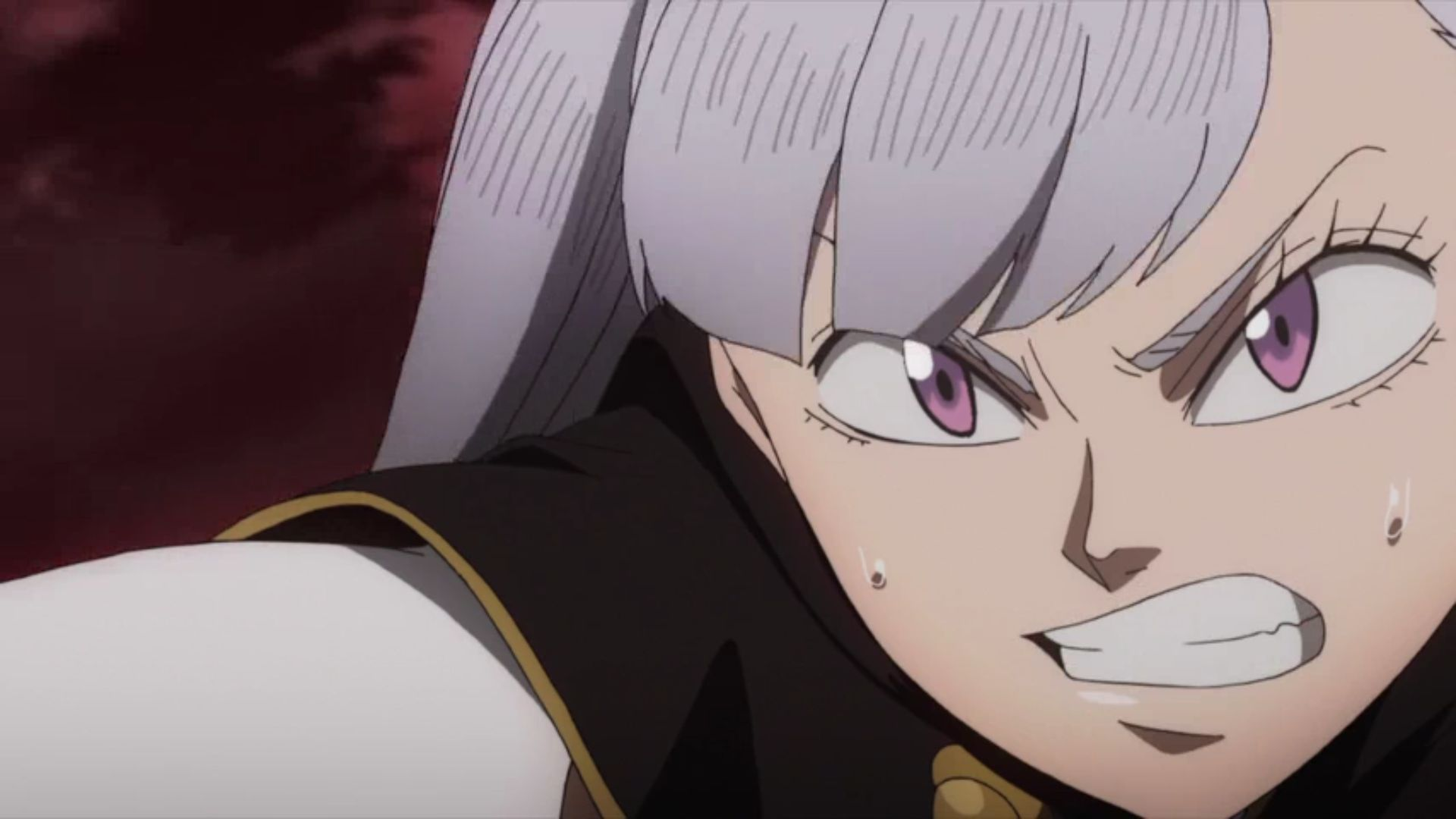 contact noelle silva black clover hd image 9 on wallpapersqq contacter amazon noelle silva black clover hd image 9 on wallpapersqq