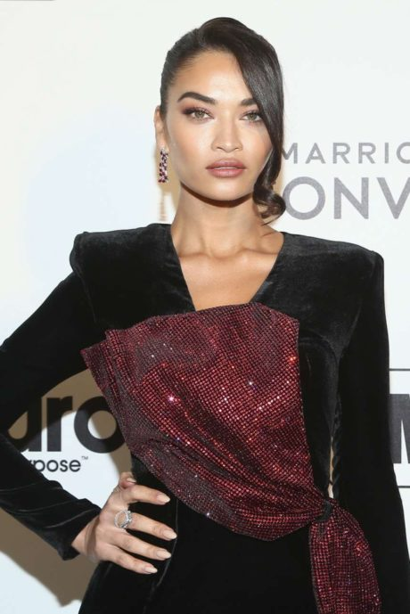 Photo 04: Shanina Shaik at the AIDS Foundation Academy Awards in Los Angeles