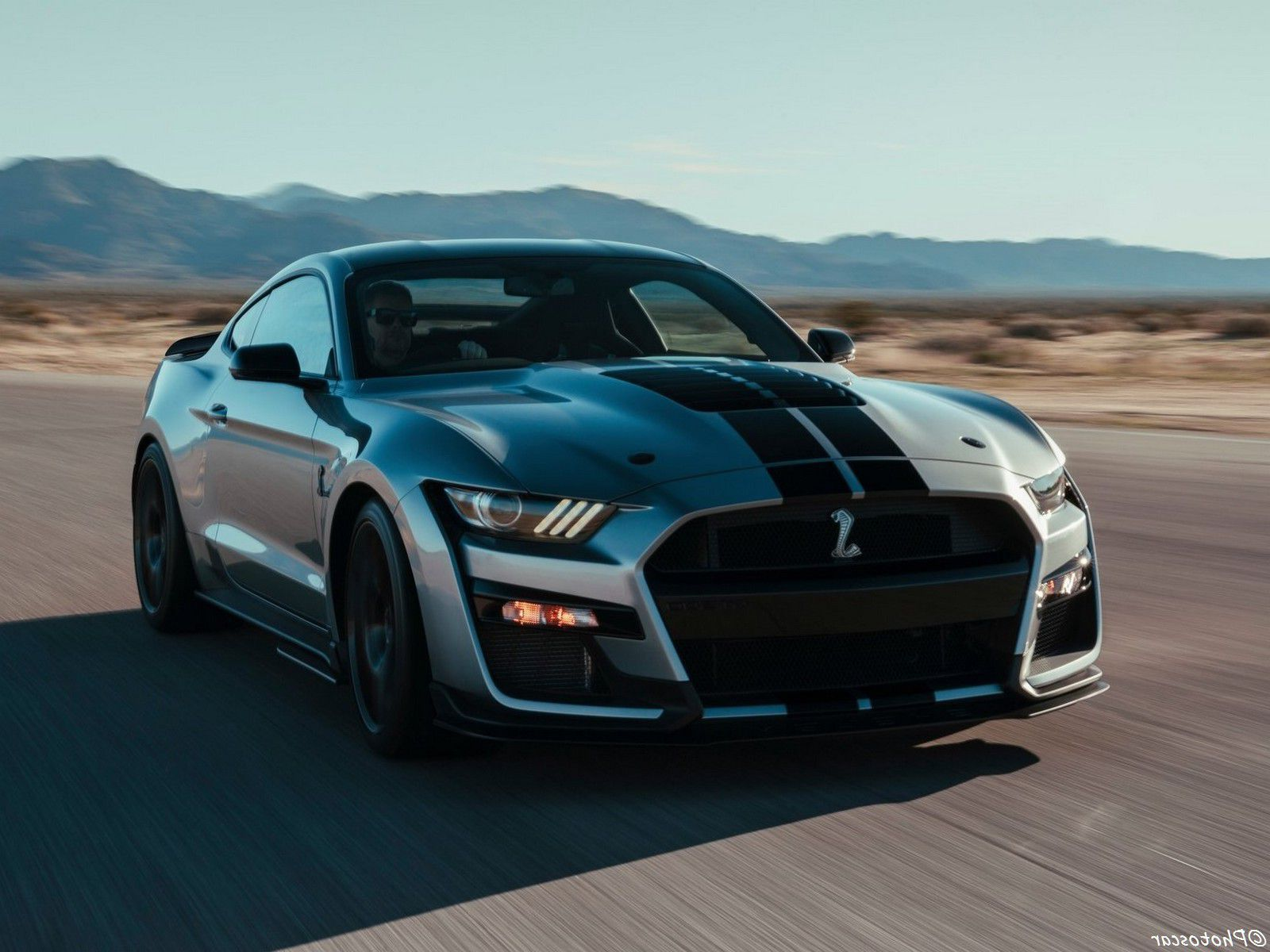 2020 Ford Mustang Shelby GT500 - Cobra in motion