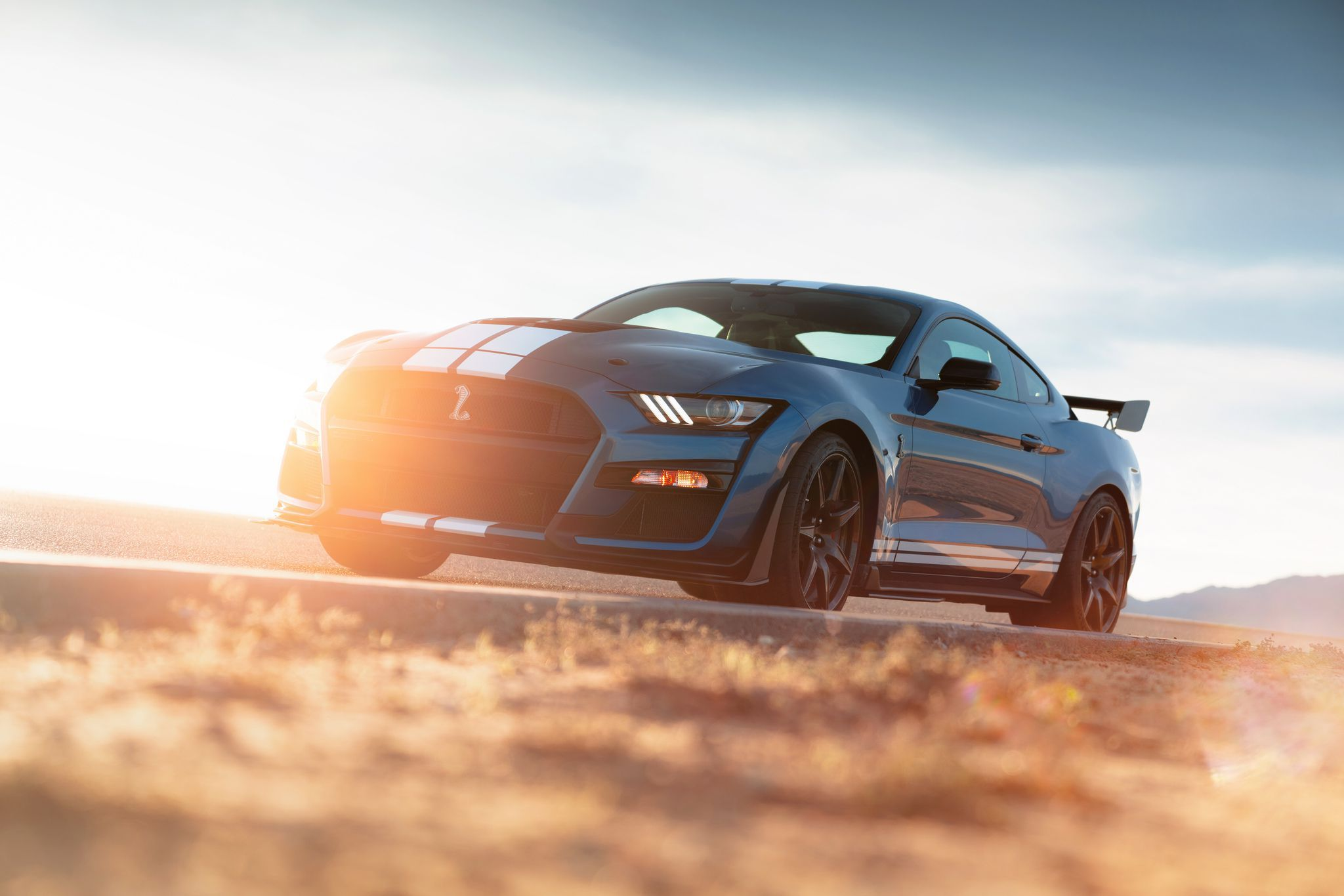 2020 Ford Mustang Shelby GT500 - in sunrise