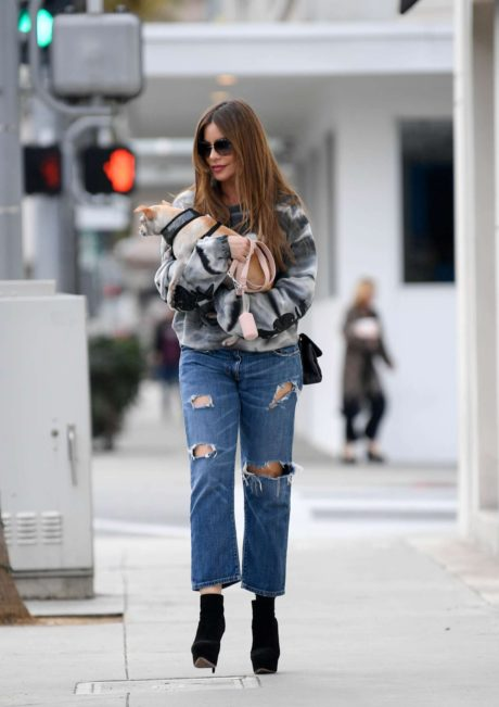 Photo 01: Sofia Vergara in blue ripped Jeans, Beverly Hills, 2019