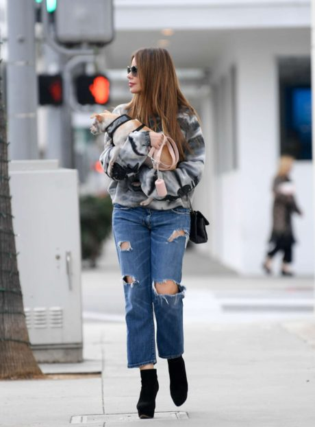 Photo 03: Sofia Vergara in blue ripped Jeans, Beverly Hills, 2019