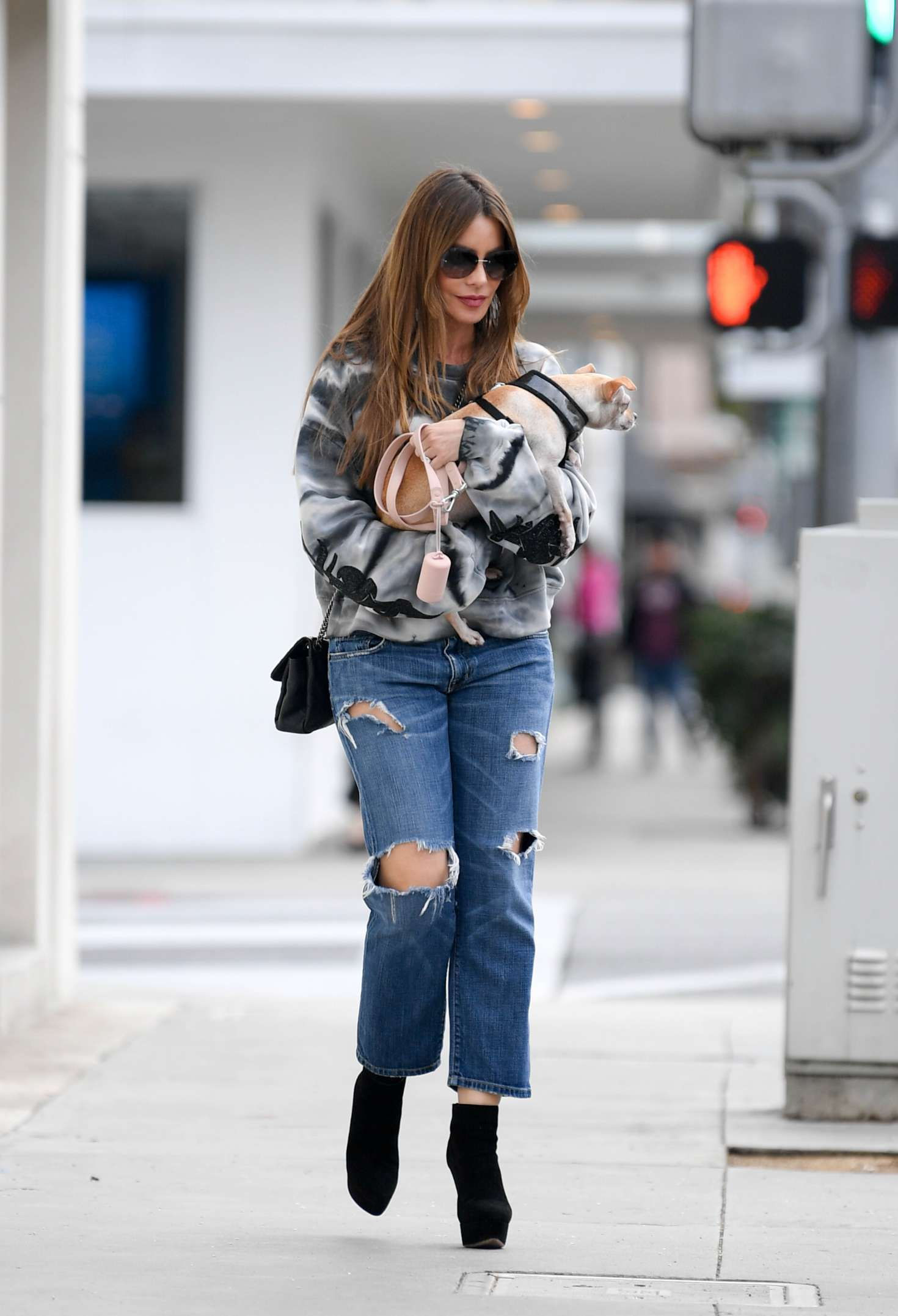 Photo 04: Sofia Vergara in blue ripped Jeans, Beverly Hills, 2019