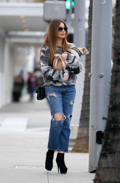 Photo 06: Sofia Vergara in blue ripped Jeans, Beverly Hills, 2019