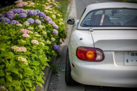 Flowers and Mazda Miata